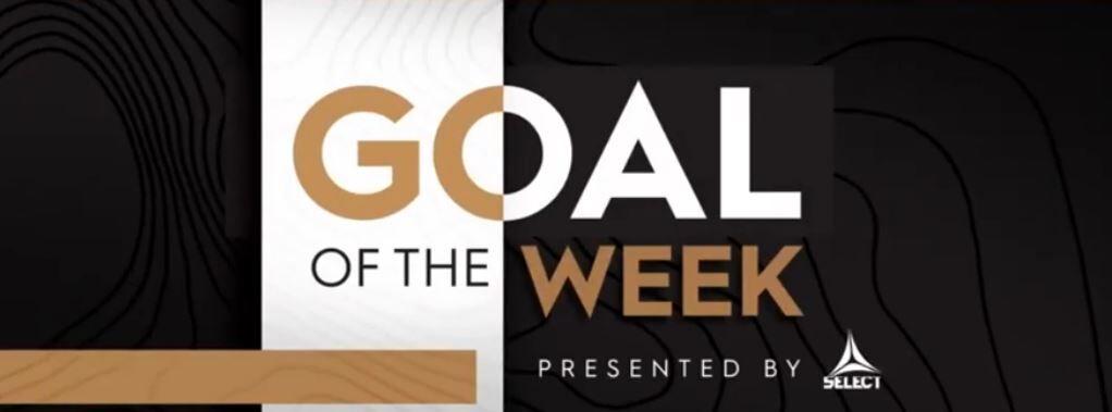 ویدیو| بهترین گلهای هفته ۱۵ لیگ آمریکا