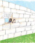 کارتون| توقع هواداران از فرهاد مجیدی